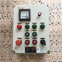 非標防爆儀表控制箱BXK
