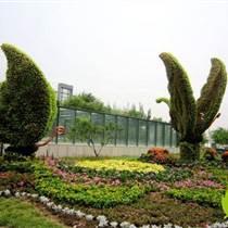 景觀綠雕造型定制綠雕工廠