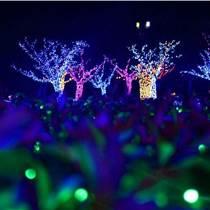 國際夢幻燈光節活動廠家