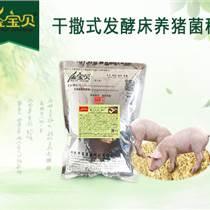 使用金寶貝干撒式發酵床養殖該如何翻倒
