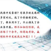 北京三級分銷軟件開發