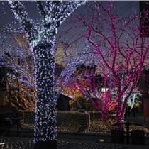 燈光秀是由LED燈帶、彩虹燈管制作