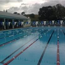 游泳池水处理设备-恒温泳池设备-水处理设备厂