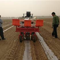 國產移栽機 提高效率 節約成本