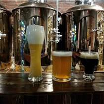 供应厂家直销精酿啤酒设备 啤酒屋设备