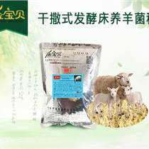 适宜小尾寒羊习性的发酵床养殖技术