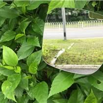 电镀加工pvc塑料镜片.塑料pc镜子