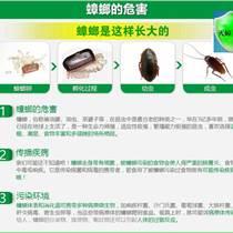 咸陽滅蟑螂、除蟑螂、殺蟑螂公司-科林害蟲防治中心