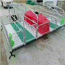 单体母猪产床仔猪保育床