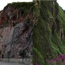 河南景繡礦山修復與治理 礦山修復景觀 礦山修復技術