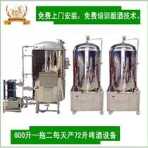 日产214升啤酒设备小型家庭自酿啤酒机精酿扎啤机鲜酿