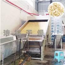 大型中藥材烘干機中草藥材烘干設備網帶式干燥機全自動烘