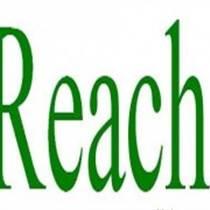 专业提供SGS认证REACH环保报告