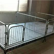 2.23.6m仔猪双体保育床价格