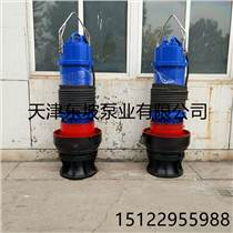 天津軸流潛水泵生產廠家