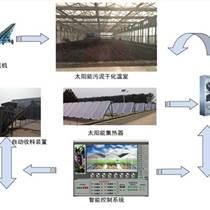 污泥干化處理工藝過程