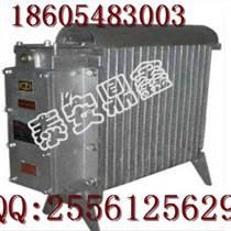 RB2000电取暖器,127V防爆取暖器