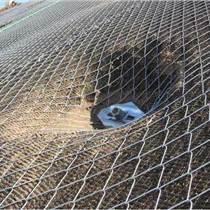 陜西最新國標規范邊坡防護網型號和配置的差異