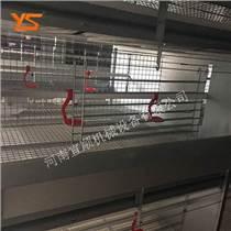 层叠式育雏笼 自动化养鸡设备