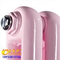 工業用蒸汽散熱器鋼制圓二柱型散熱器5025鋼制二