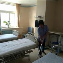 地毯清洗 专业清洗专家 就选子禾保洁