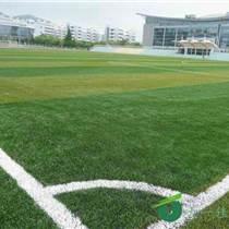 足球场建设/学校球场整体施工/足球场规划/学校操场改
