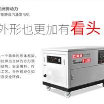 歐洲獅工程380V汽油發電機