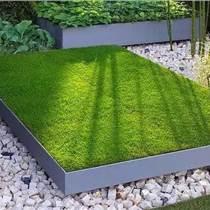 株洲公园,庭院绿化一般用什么草皮,矮生百慕大可以吗,