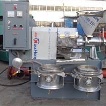 油桐榨油机 油菜籽榨油设备 榨油机 全自动黄豆榨油机