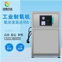 創粵CYZ-3L小型工業制氧機 臭氧配套制氧機 工廠