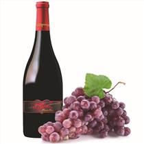 美国红酒供应批发美国三姐妹黑品诺红葡萄酒