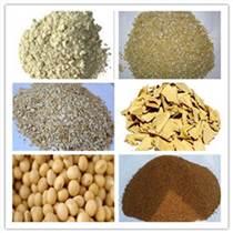 種金針菇原料