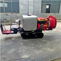 葡萄園風送式打藥機節水省藥果園果樹專用打藥噴霧機大面