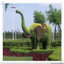 承德五色草立體花壇設計