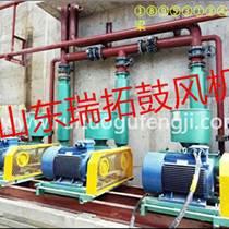 氮气输送N型机封罗茨鼓风机厂家价格
