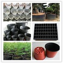 水生植物营养杯