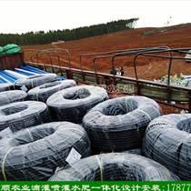 广西沃柑滴灌水肥一体化灌溉 南宁水肥一体化设备 滴灌