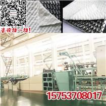 三維土工排水網設備/生產線