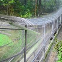 玻璃水滑道_玻璃水滑道廠家設計_玻璃水滑道服務_嘉旭