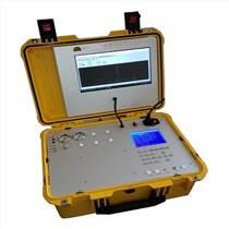 天然氣熱值分析儀DPS-8100