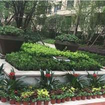 上海庭院景觀施工上?;▓@庭院設計施工上海別墅庭院設計