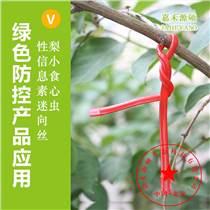 梨小食心蟲性迷向素丨防治梨小食心蟲丨迷向絲使用方法丨