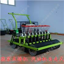蔬菜播種機汽油機自走式 蔬菜精播機廠家 香菜播種機