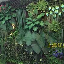 上海仿真綠色植物墻上海仿真植物墻價格仿真植物墻多少錢