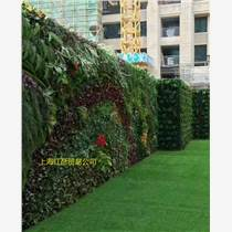 上海室內植物墻上海室外植物墻上海綠色植物墻