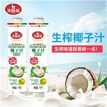 中山餐飲店椰子汁飲料1L 8方瓶廠家批發直銷招商