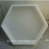 预制六角板护坡塑料模具 厂家