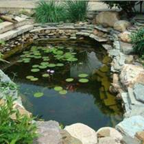 濟南魚池改造濟南魚池防水用什么材料濟南魚池過濾方法