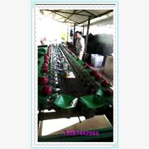 油桃分選機分為自動上果,跟人工上果兩種,自動選果機需