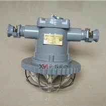 DGS20/127L(A)礦用隔爆型LED巷道燈